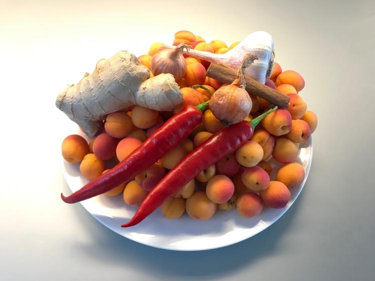 Ingredients for Apricot Chutney © cadwu